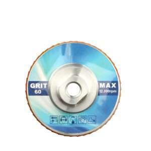 JOY-WMCY02(Shinning net )Diamond Flap Disc